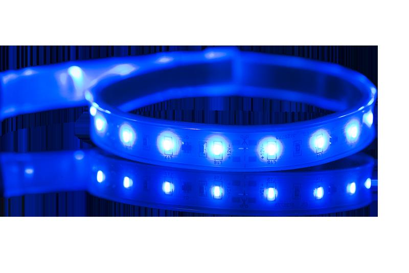 Covemax Blue-no BG(800x534)